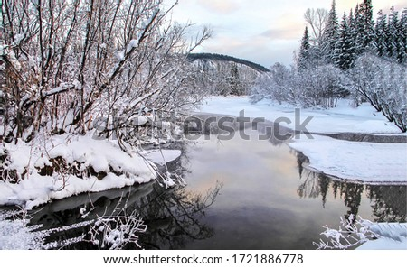 Winter snow forest river water