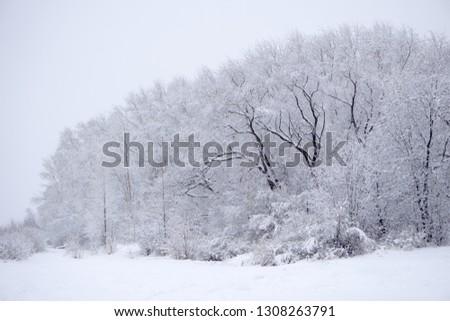 Winter snow forest road turn landscape. Snow winter forest road turn view. Winter forest snow road scene .