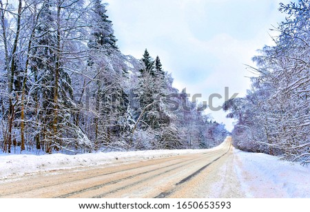 Winter snow forest road view. Forest winter road view. WInter snow road in forest. Forest snow winter road