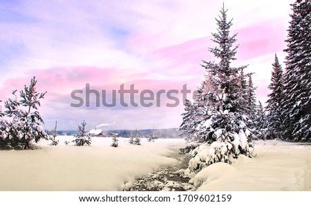 Winter snow forest scene. Evening winter snow rural landscape. Rural nature in winter snow scene. Winter snow rural landscape
