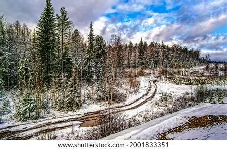 Winter snow forest trails and roads