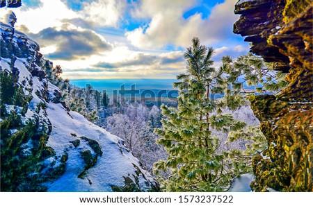 Winter snow mountain tree view. Winter mountain snow. Snowy mountain scene. Winter snow mountains