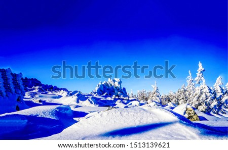 Winter snow nature landscape. Snowy winter nature landscape. Winter snow nature scene. Winter snow landscape