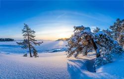 Winter snow nature morning landscape. Sunrise winter snow nature. Snowy winter nature sunrise landscape. Winter sunrise nature snow