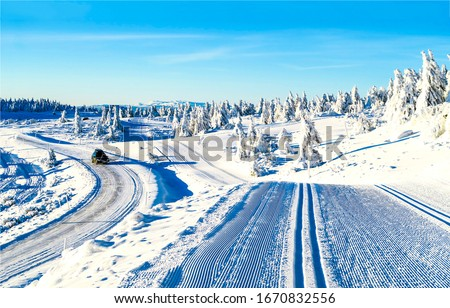 Winter snow nature road and ski track. WInter snow road. Ski track and winter snow road