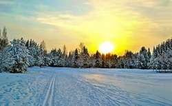 Winter snow nature sunset landscape. Sunset winter forest snow. Winter forest sunset sky