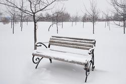 Winter. snow. park. Bench.
