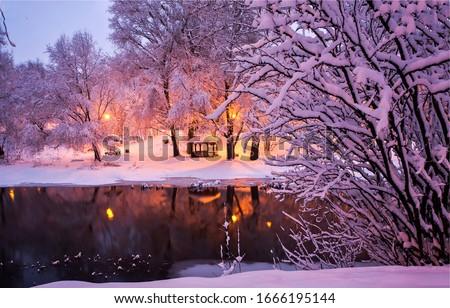 Winter snow park river night landscape. Night winter park river. Night lights in winter snow park. Winter snow park river view