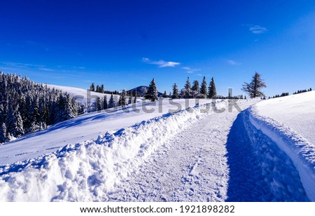 Winter snow path in sunny day. Wintry outdoors landscape in winter snow season. Snow path in winter landscape. Winter pathway snow