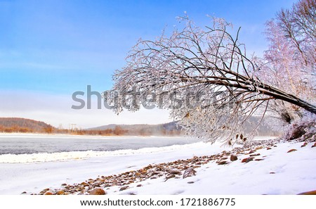 Winter snow river tree view