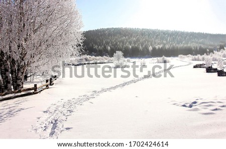 Winter snow rural nature path landscape. Winter snow pathway. Snowy path in winter scene. Rural winter snow scene