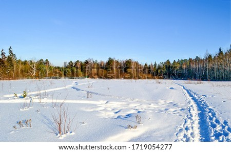 Winter snow rural path landscape