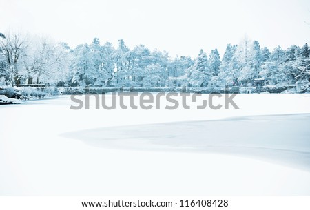 Winter, snow scene,Frozen lake, Famous scenic area, the Mount Lu of China #116408428