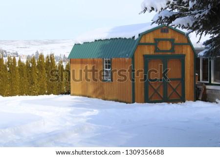 Winter snow scenes #1309356688