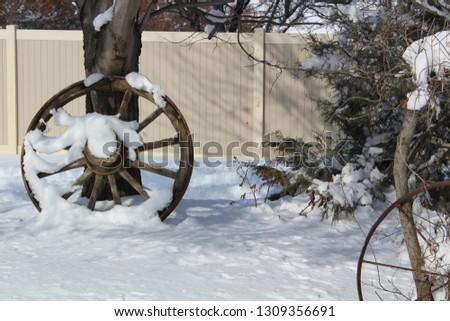 Winter snow scenes #1309356691