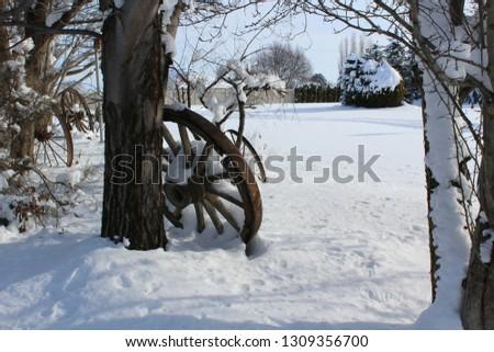 Winter snow scenes #1309356700