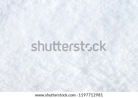 Winter snow. Snow texture Top view of the snow. Texture for design. Snowy white texture. Snowflakes. #1197712981