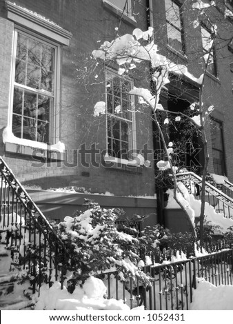 winter snow with brooklyn heights brownstone
