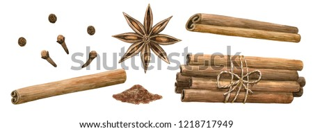 Winter spices. Cinnamon roll, pinch, star anise, clove, pepper. Set of elements. Hand drawn watercolor illustration. Isolated on white background