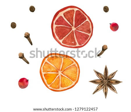 Winter spices. Oranges, star anise, clove, pepper. Hand drawn watercolor illustration. Isolated on white background.