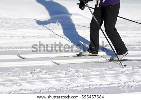 Winter sports in Bavaria - Skating and cross country ski trail. A woman at cross-country skiing #555457564
