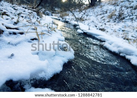 Winter stream. The stream runs among the icy shores #1288842781