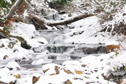 Winter Stream, WA-USA