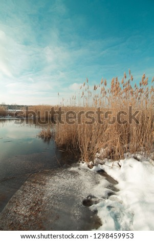 Winter sunny day on nature in Ukraine #1298459953
