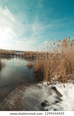 Winter sunny day on nature in Ukraine #1299544459