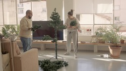 Winter sunny morning in an apartment with big windows. Boyfriend and girlfriend mounting an artificial fir tree. Dark hair young woman and bold mixed-race man in the glasses. High-resolution jpg photo