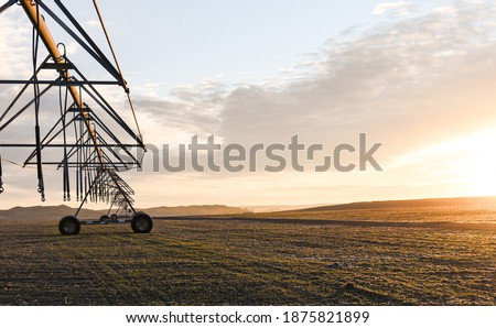 winter sunrise in a field with a pivot, farming, irrigation, winter crop, farming, agriculture Photo stock ©