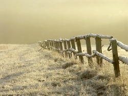 Winter sunrise over misty grassland covered with frost with wooden fence in the foreground. Photo taken in January.