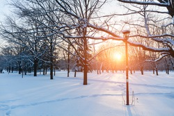 winter sunset in snow covered park