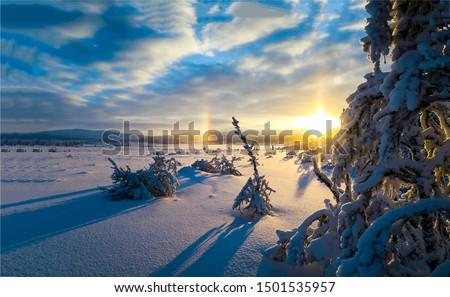 Winter sunset snow horizon landscape. Sunset winter snow nature horizon landscape. Winter sunset snow nature scene. Sunset winter snow horizon view