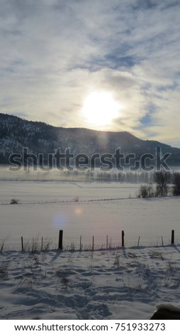 winter sunshine #751933273