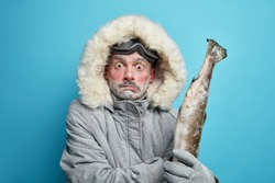 Winter time concept. Stupefied scared man eskimos goes fishing on ice holds frozen fish dressed in grey jacket with hood travels in north isolated on blue wall. Cold season and adventure travel