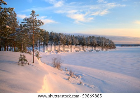 Winter time in forest lake. Evergreen wood and shore in snow #59869885