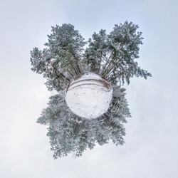 Winter tiny planet in snow covered forest. transformation of spherical panorama 360 degrees. Spherical abstract aerial view in forest. Curvature of space.