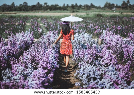 Winter travel relax vacation concept, Young happy traveler asian woman with dress and flower crown walking on Margaret Aster flowers field in garden at Chiang Mai, Thailand