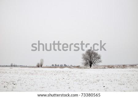 Winter tree alone (Four seasons set)\ Whole set (IDs: 73380565, 73380556, 73380559, 124452046)