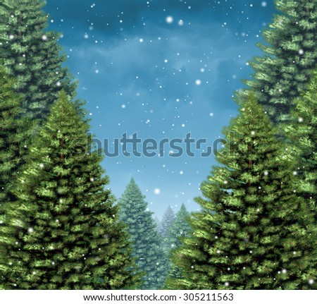 Winter tree background concept as a group of Christmas trees with snow flakes falling as a seasonal holiday symbol with blank copy space for a greeting card or a festive New Year season announcement.