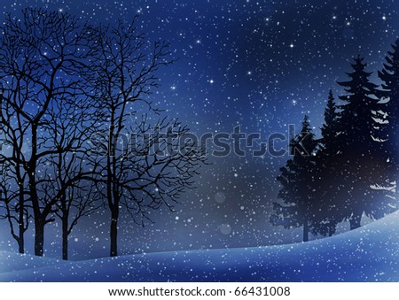 Winter Trees Background - stock photo