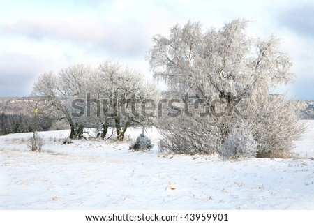 Winter trees, landscape near small, picturesque Pasterka village in Poland. Famous tourist attraction, Table Mountain.
