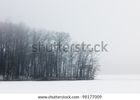 Winter trees on a foggy, icy lake.