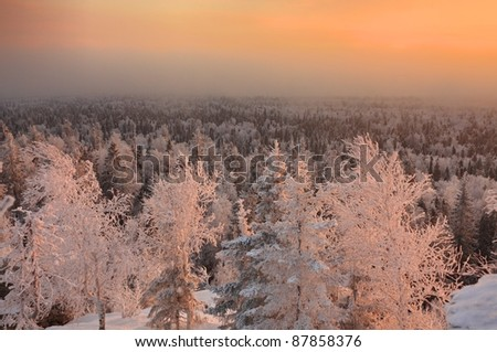 winter ural forest moutains