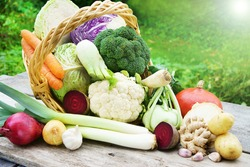 Winter vegetables with basket, copy space