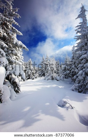 winter view in high mountain