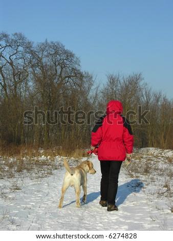 Winter walk with dog.