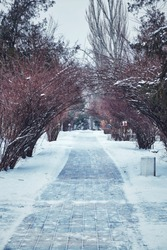 Winter walkway from tile under snow in a park in a big city