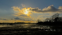 Winter wetlands with reflection of bare clouds and sun in the water in Bourgoyen nature reserve, Ghent, Flanders, Belgium